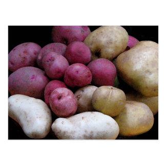 Carte postale de pomme de terre