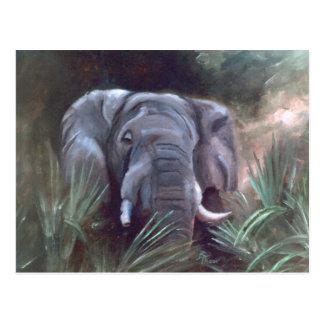 Carte postale de portrait d'éléphant