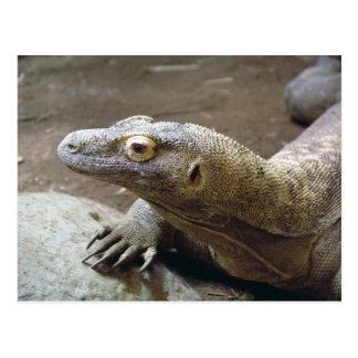 Carte postale de profil de Komodo