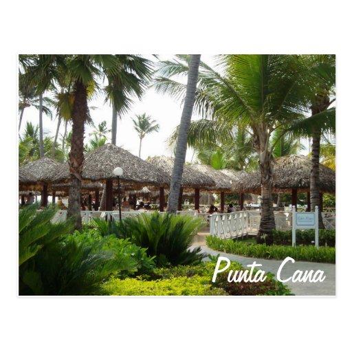 Carte postale de Punta Cana | Zazzle