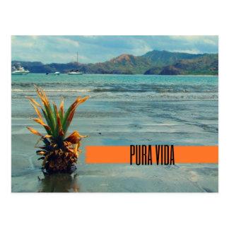 Carte postale de Pura Vida de plage du Costa Rica