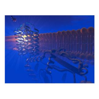 Carte postale de récepteur de protéine de G