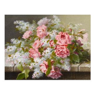 Carte postale de rose et blanche rose vintage de