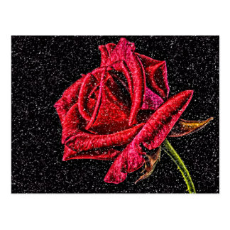 carte postale de rose rouge