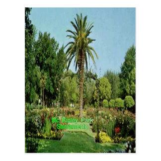 Carte postale de Sacramento de parc de Mc Kinley