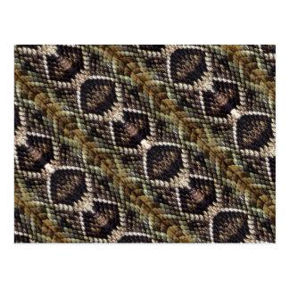 Carte postale de serpent à sonnettes