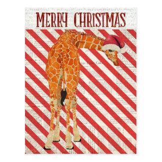 Carte postale de sucre de canne de girafe