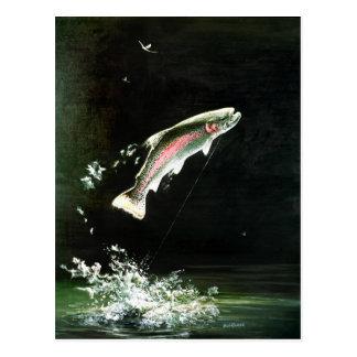 carte postale de truite arc-en-ciel