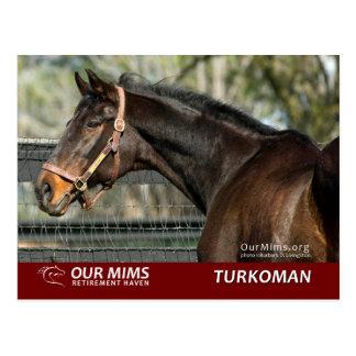 Carte postale de Turkoman