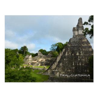 Carte postale de vue de temple de Maya de Tikal