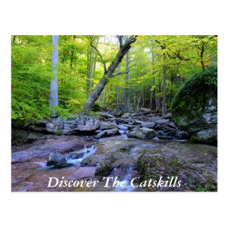 Carte Postale Découvrez le Catskills 5