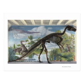 Carte Postale Denver, le Colorado - musée d'histoire naturelle