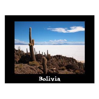 Carte postale des textes de cactus et de Salar de