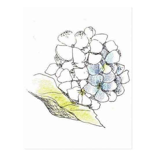 Carte Postale Dessin A L Encre De Fleur D Hortensia Zazzle Fr
