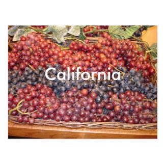 Carte postale d'établissement vinicole de la