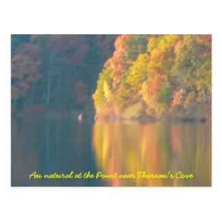 Carte postale d'étang de Walden