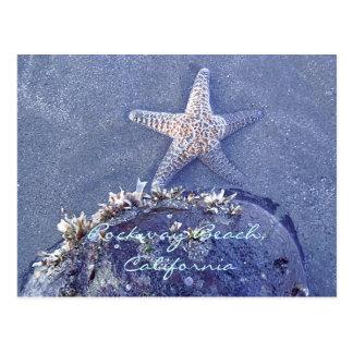 Carte postale d'étoiles de mer