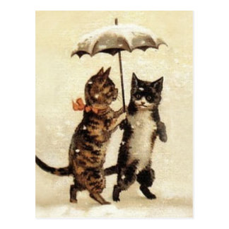 Carte Postale Deux chats un parapluie