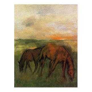 Carte Postale Deux chevaux dans un pâturage par Edgar Degas