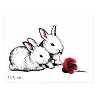 Carte Postale Deux petits lapins blancs