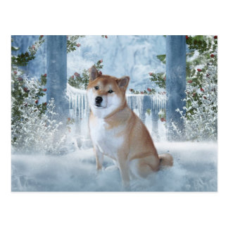 Carte postale d'hiver de Shiba Inu