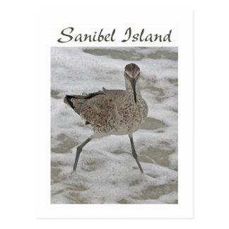 Carte postale d'île de Sanibel de joueur de pipeau