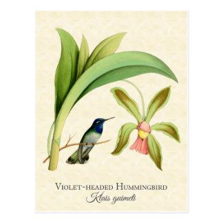 Carte postale dirigée violette d'art de colibri