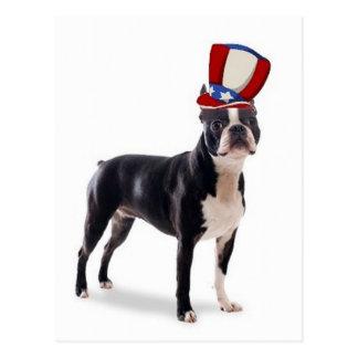 Carte Postale Dogs~Original Ditzy Postcard~Boston Terrier