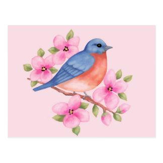 Carte postale d'oiseau bleu