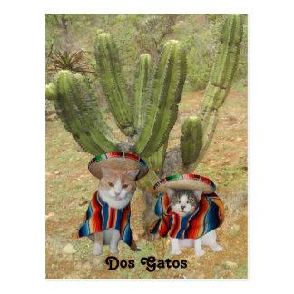 Carte Postale DOS Gatos