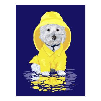 Carte Postale Douches d'avril de chien de Westie