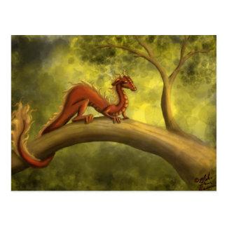 Carte Postale Dragon d'arbre