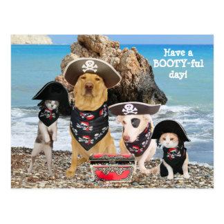 Carte postale drôle de jour de pirate d'animal