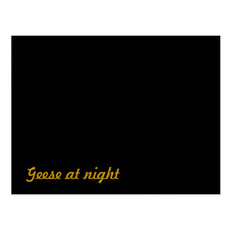 Carte Postale Drôle : Oies la nuit