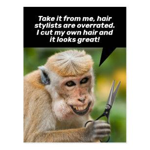 Carte Postale Drôle singe avec un abri anti-cheveux en place
