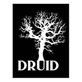 Carte Postale Druide
