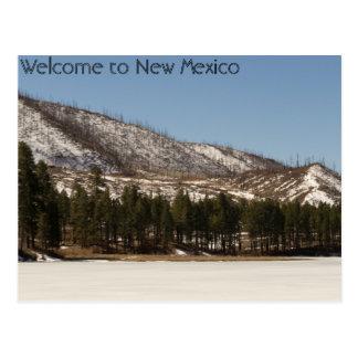 Carte postale du Nouveau Mexique