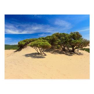 Carte Postale Dune de Piscinas - Sardaigne, Italie