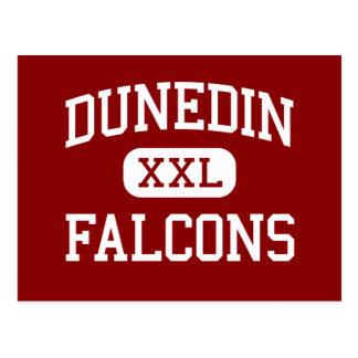 Carte Postale Dunedin - Falcons - lycée - Dunedin la Floride