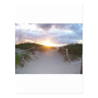 Carte Postale Dunes