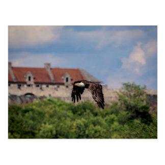 Carte Postale Eagle chauve passant le fort Ticonderoga