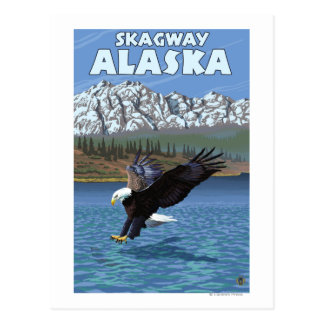 Carte Postale Eagle chauve plongeant - Skagway, Alaska