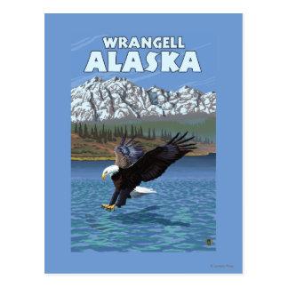 Carte Postale Eagle chauve plongeant - Wrangell, Alaska