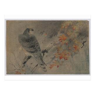 Carte Postale Eagle sur une branche d'érable