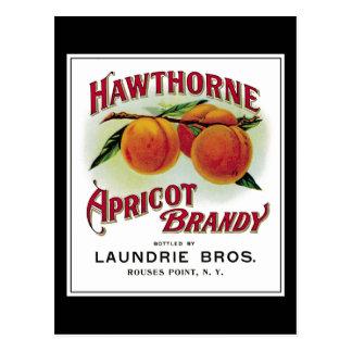 Carte Postale Eau-de-vie fine de Hawthorne Aprilcot