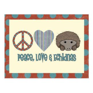 Carte Postale Echidnas d'amour de paix