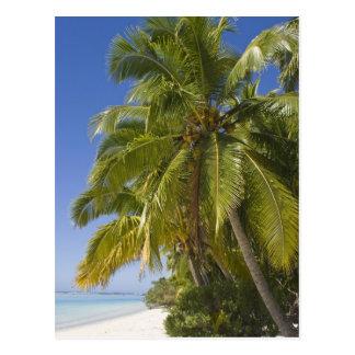 Carte Postale Échouez sur une île de pied, Aitutaki, îles Cook