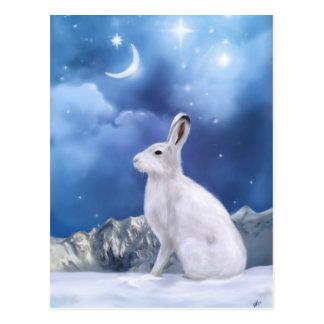 Carte postale éclairée par la lune de sentinelle