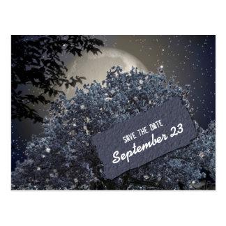Carte Postale Économies bleues enchantées d'arbre de nuit la