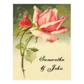 Carte Postale Économies de rose de cru la date